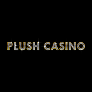 A Very Clear and Defined Logo Gives This Casino a Professional Look